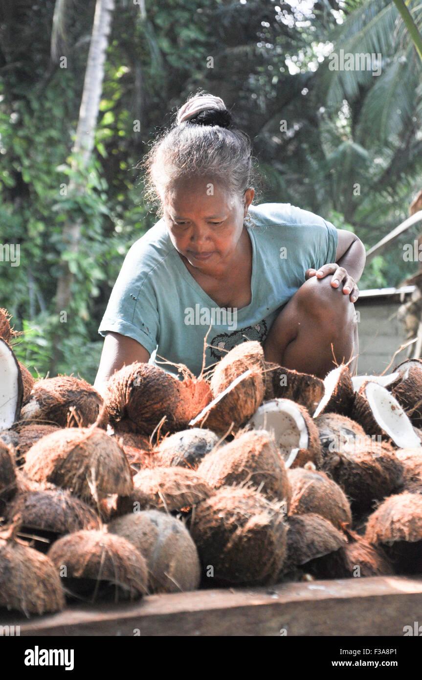 Vecchia donna organizzare noci di cocco su una piattaforma di legno in Natuna, Indonesia. Immagini Stock