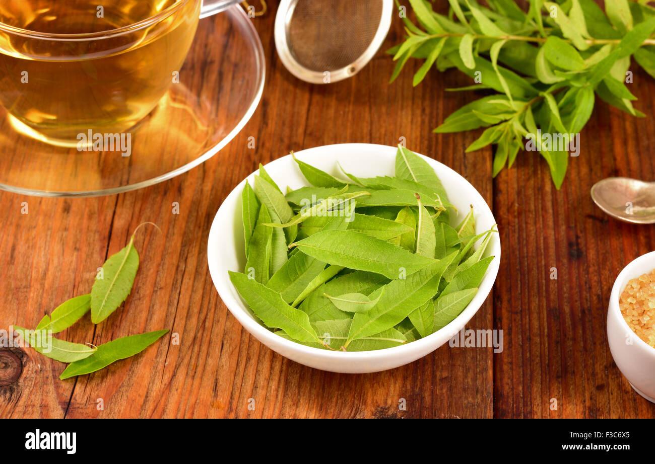 La verbena del limone foglie sul recipiente bianco e verbena tè sul tavolo di legno. Aloysia citrodora. Foto Stock