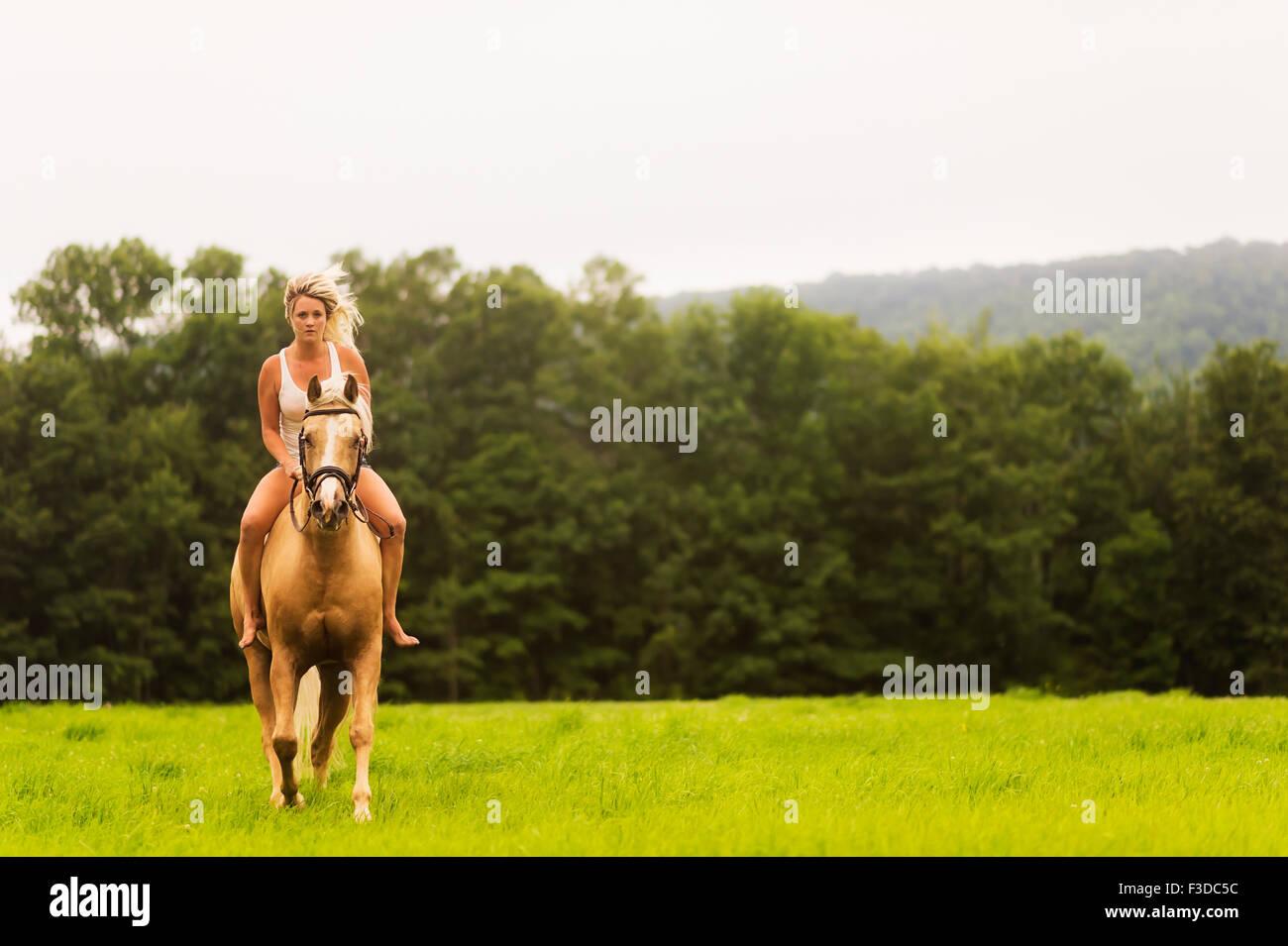 La donna a cavallo nella campagna Foto Stock