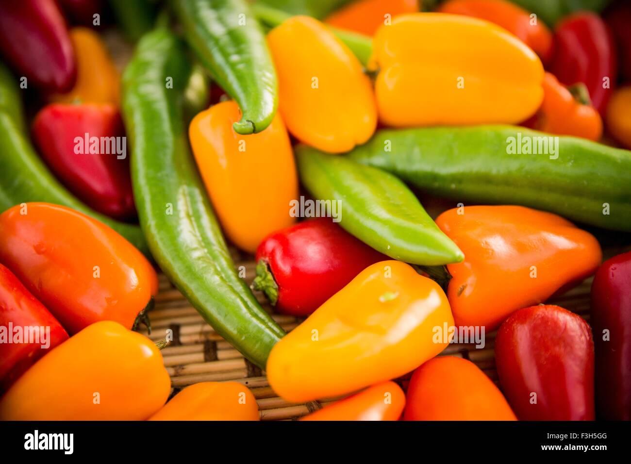 Selezione di peperoni colorati, full frame, close-up Immagini Stock