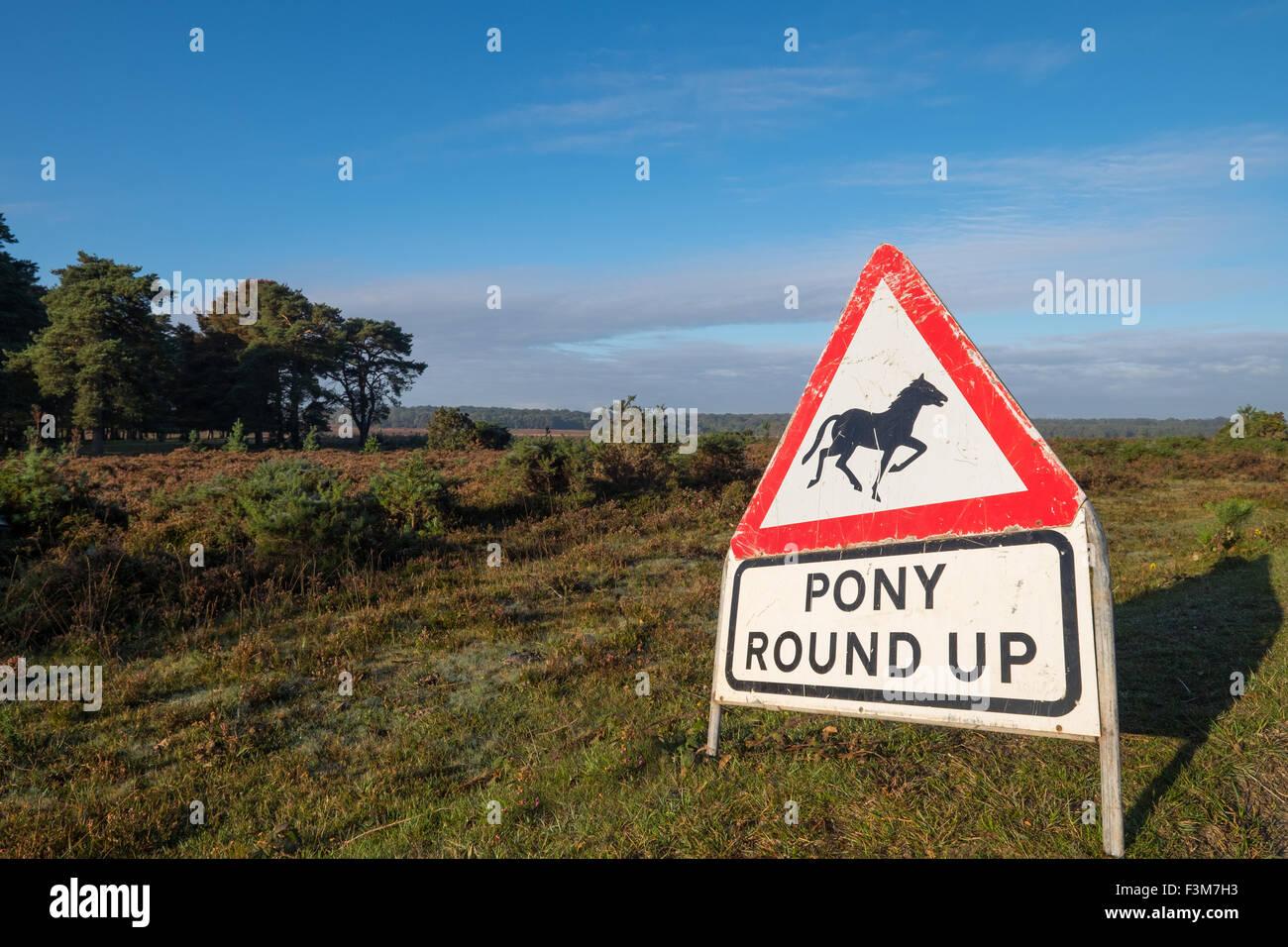 Pony round up attenzione cartello stradale nella nuova foresta Hampshire REGNO UNITO Immagini Stock