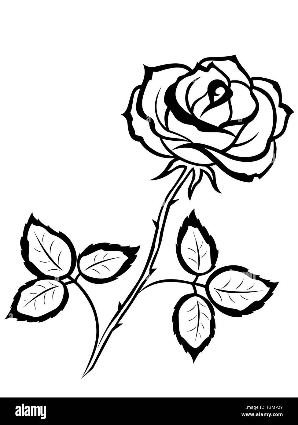 Bella Sagoma Nera Di Single Rose Fiore Isolato Su Uno Sfondo Bianco