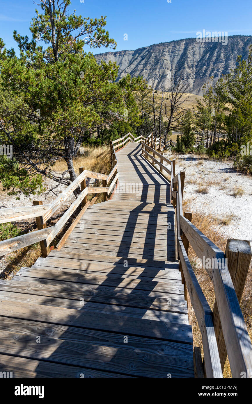 Il Boardwalk; Mammoth Hot Springs; il Parco Nazionale di Yellowstone; Wyoming; USA Immagini Stock