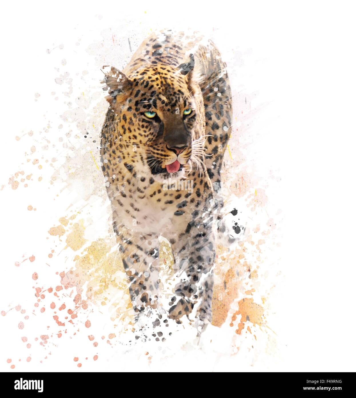 La pittura digitale di Leopard su sfondo bianco Immagini Stock