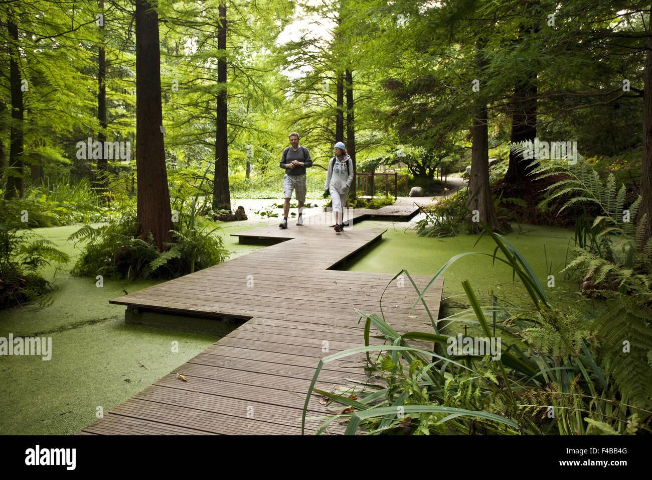 Giardino Botanico, la Ruhr University di Bochum. Immagini Stock