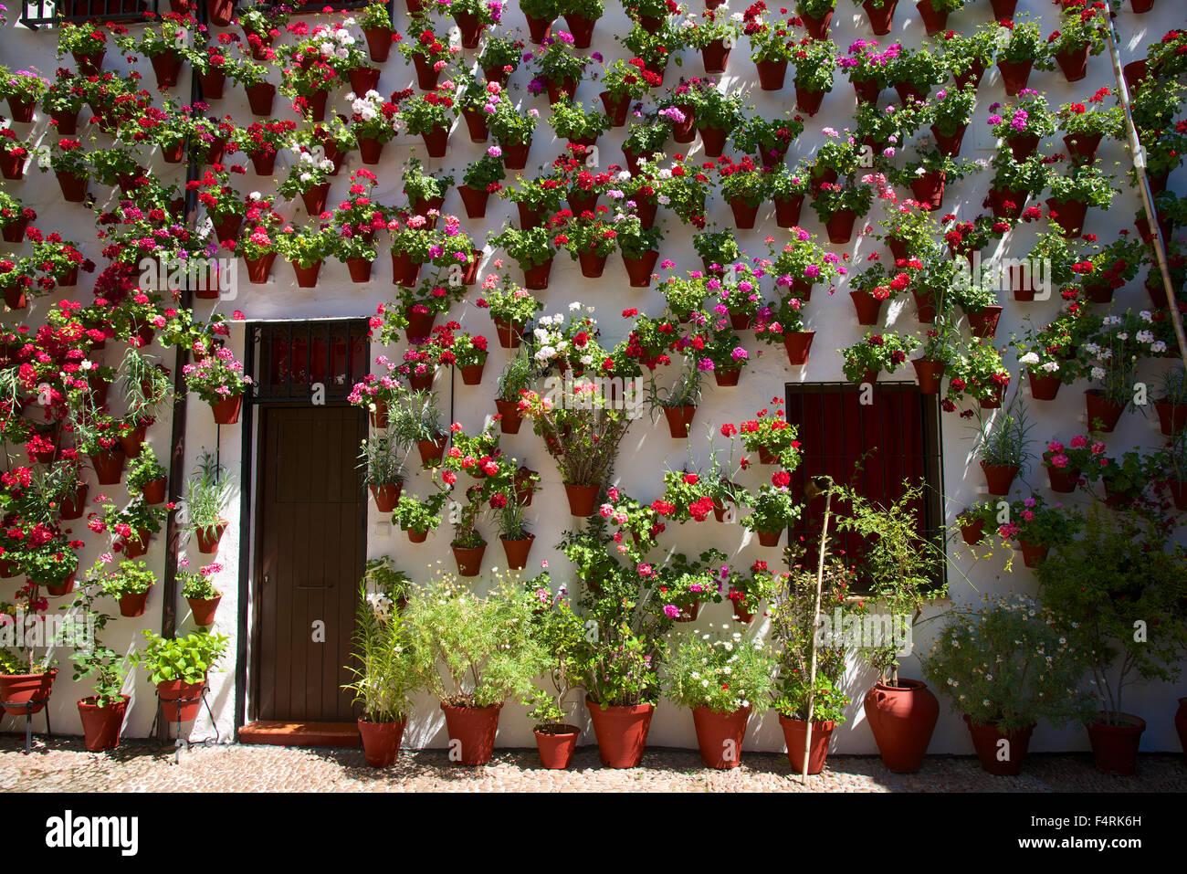 Andalusia, Spagna, Europa, Esterno, giorno, Cordoba, Fiesta de Los patios, tradizione, tradizionale, la decorazione Immagini Stock
