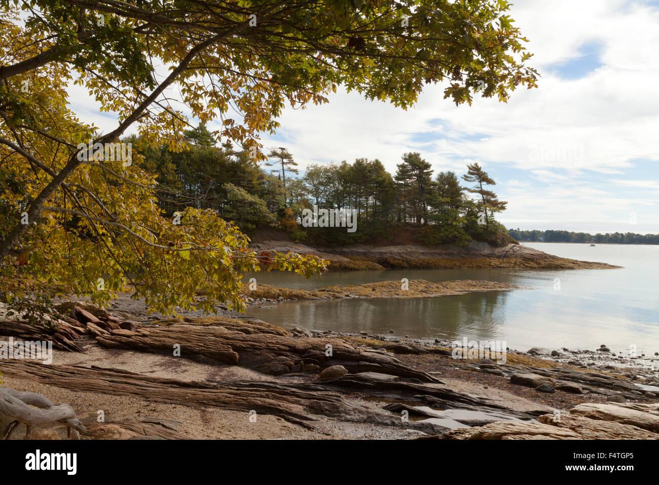 Maine costa al collo Wolfes boschi del Parco Statale di Casco Bay Freeport, Maine, Stati Uniti d'America Immagini Stock