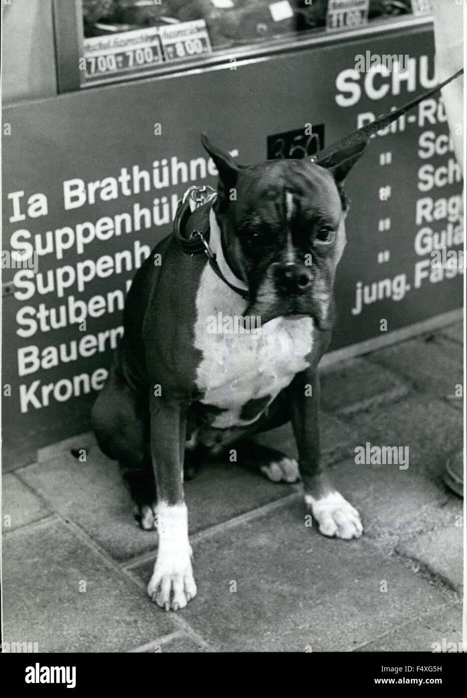 1968 - ''Io Sono un povero cane pensa? Che non è giusto! Alle spalle di miniera, vi sono annunciati Immagini Stock