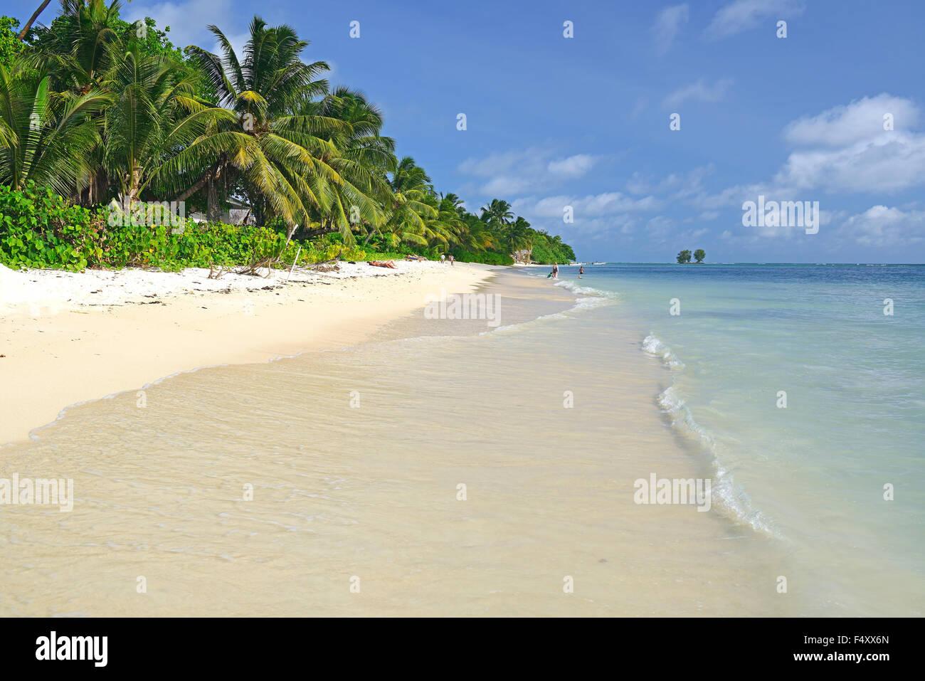 Anse La Reunion, spiaggia da sogno, palme, La Digue Island, Seicelle Immagini Stock