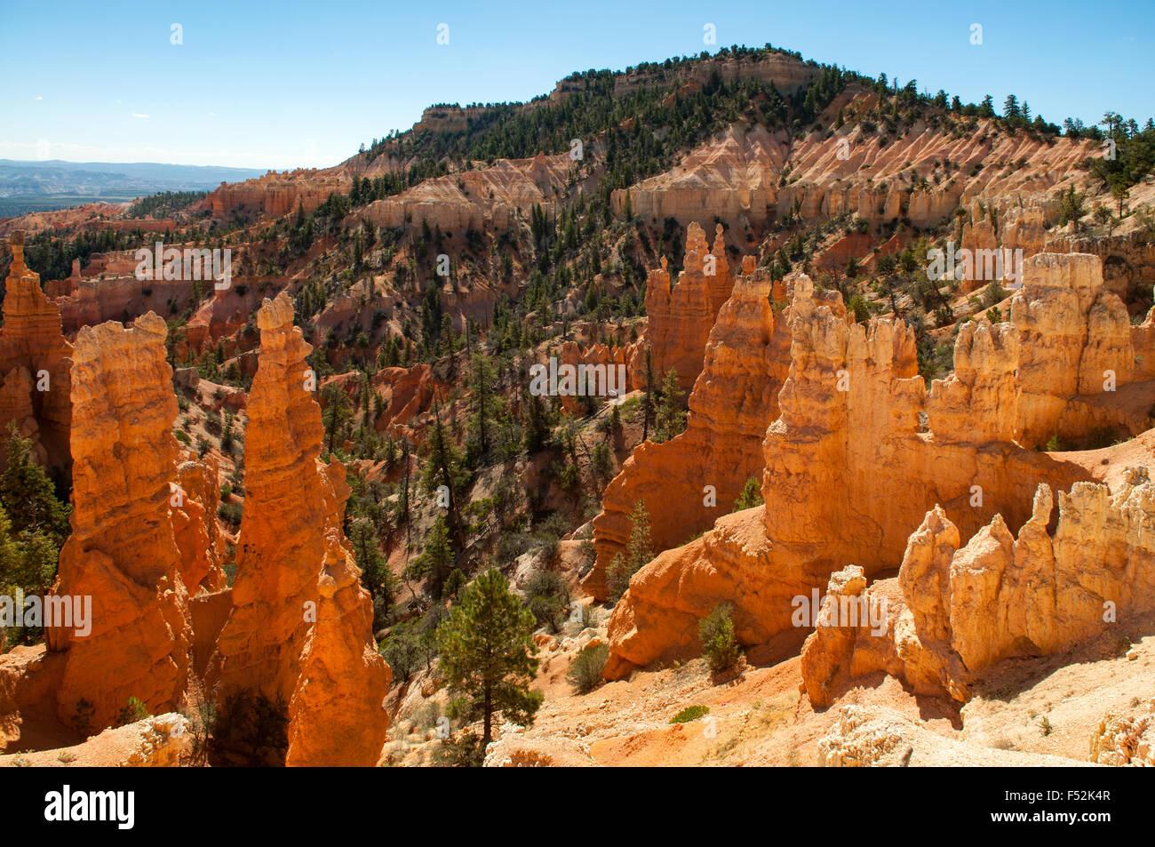 Vista dal punto di fairyland, Bryce Canyon dello Utah, Stati Uniti d'America Immagini Stock