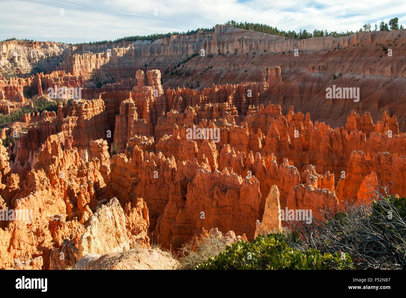 Vista da vicino punto di tramonto, Bryce Canyon dello Utah, Stati Uniti d'America Immagini Stock