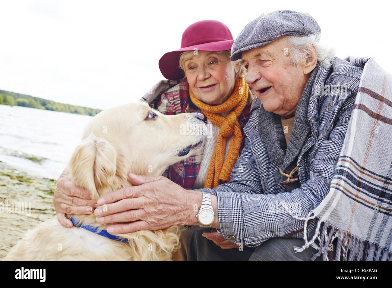Gli anziani guardando retriever con orgoglio e amore Immagini Stock