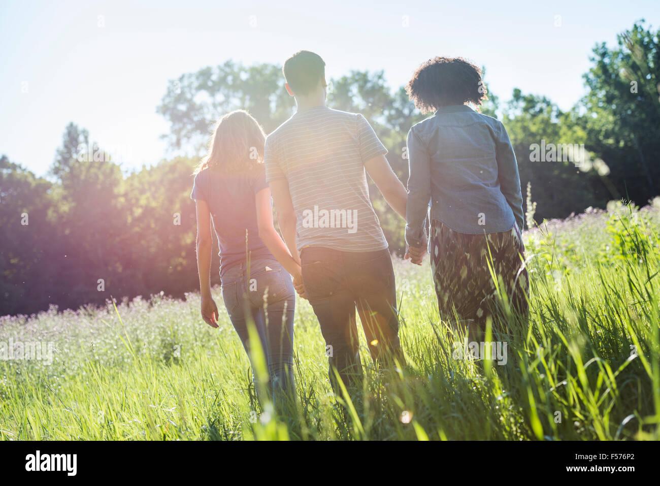 Tre persone che camminano mano nella mano attraverso l'erba lunga, in estate. Vista posteriore. Immagini Stock