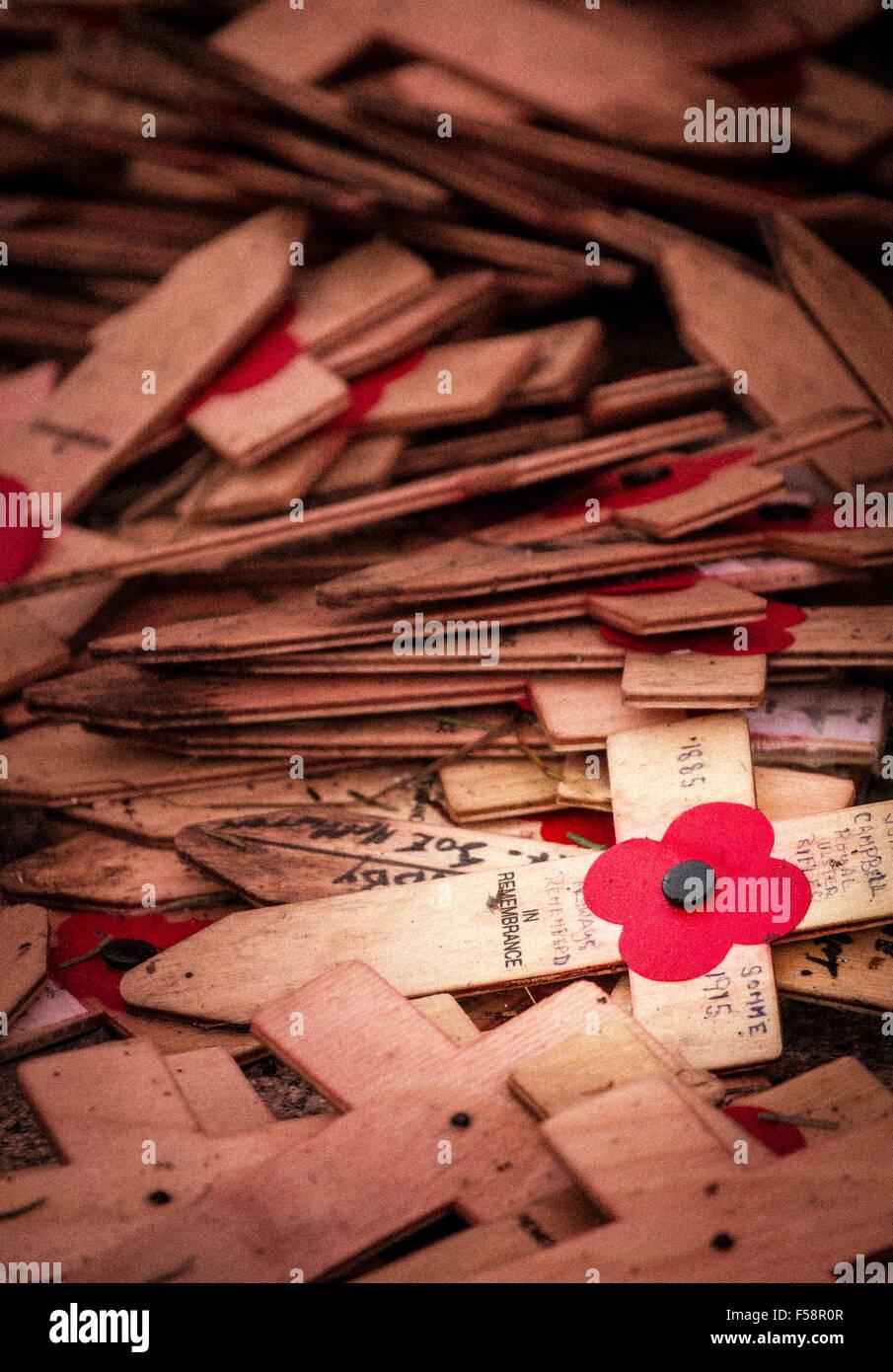 Croci di legno e di papavero stesa per terra come parte di il giorno dell'armistizio ricordo evento Immagini Stock