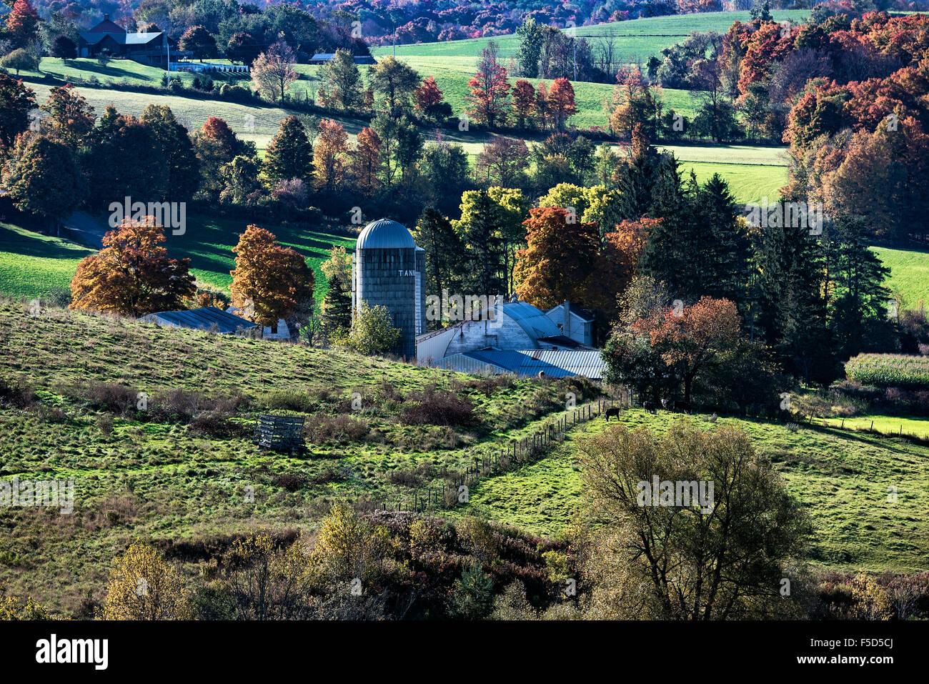 Scenic autunno farm, Madison, New York, Stati Uniti d'America Immagini Stock