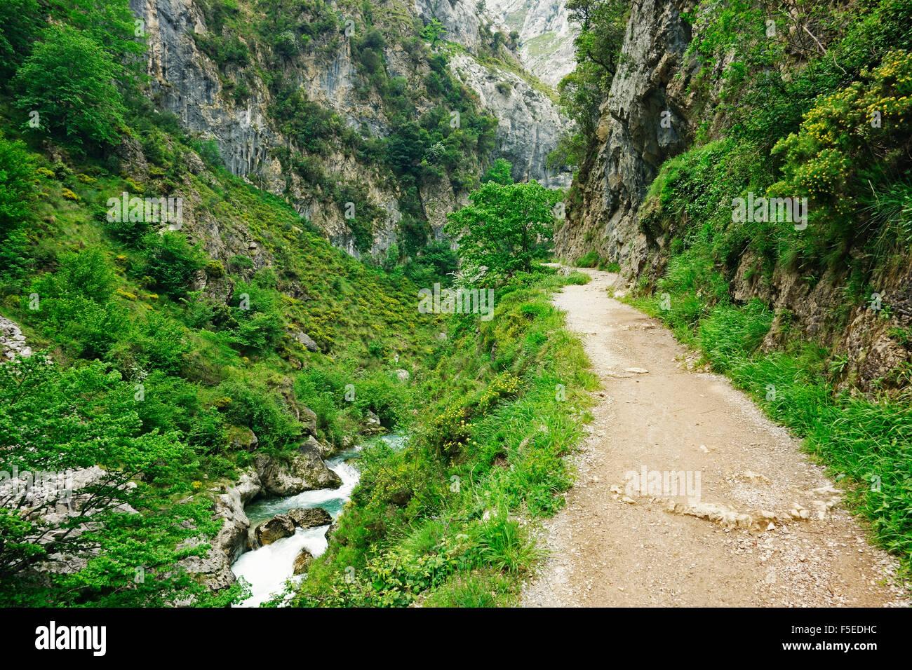 Sentiero attraverso Desfiladero del Rio si preoccupa di Picos de Europa, Parque Nacional de los Picos de Europa, Immagini Stock