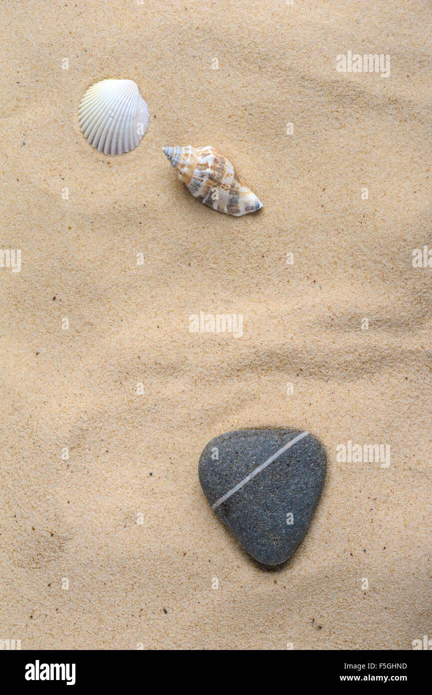 Concetto romantico di un cuore di pietra sagomata e alcune conchiglie su una riva sabbiosa. Immagini Stock