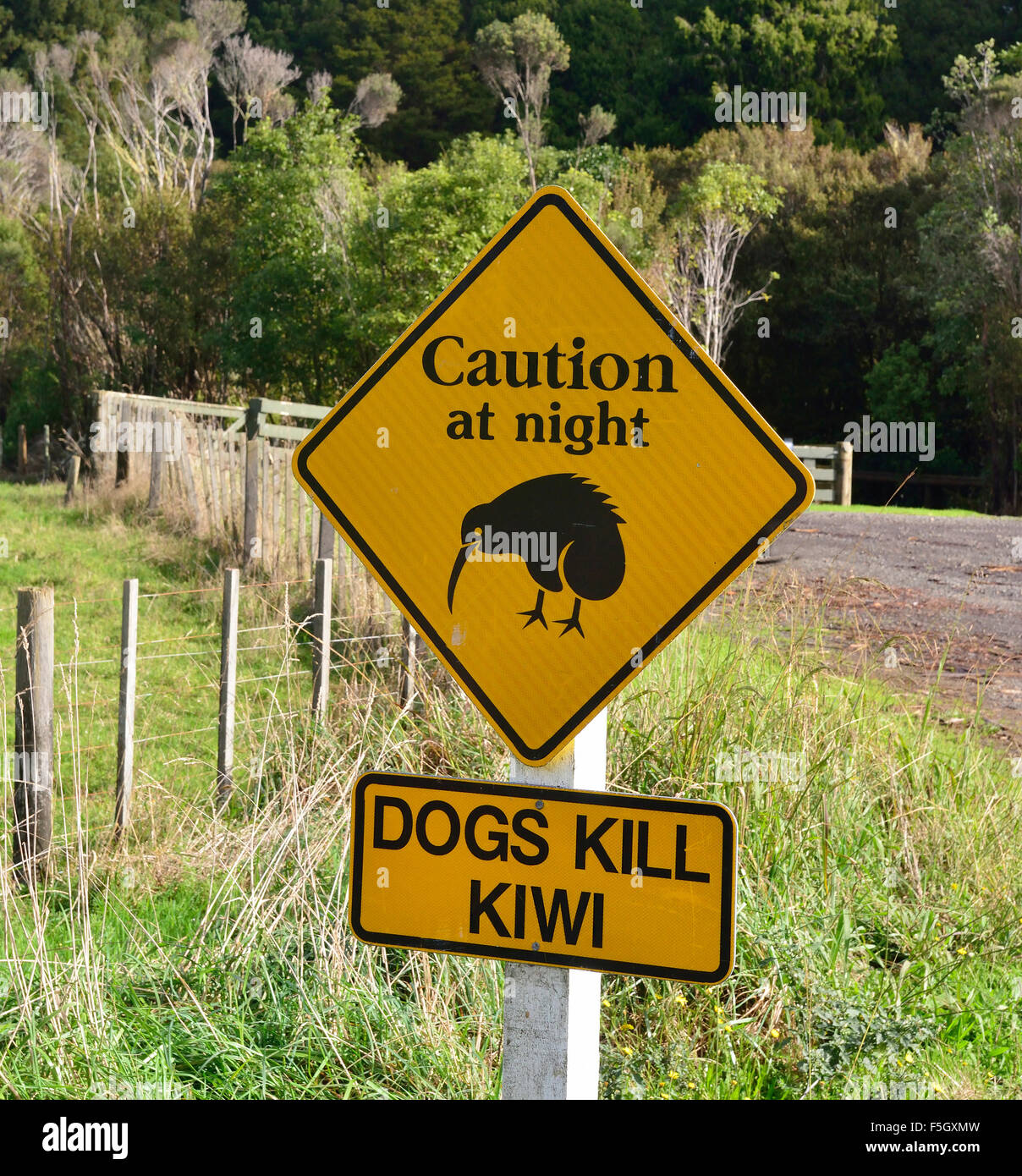 Attenzione cartello stradale plus consigli secondari per evitare i decessi di uccello Kiwi intorno al loro habitat Immagini Stock