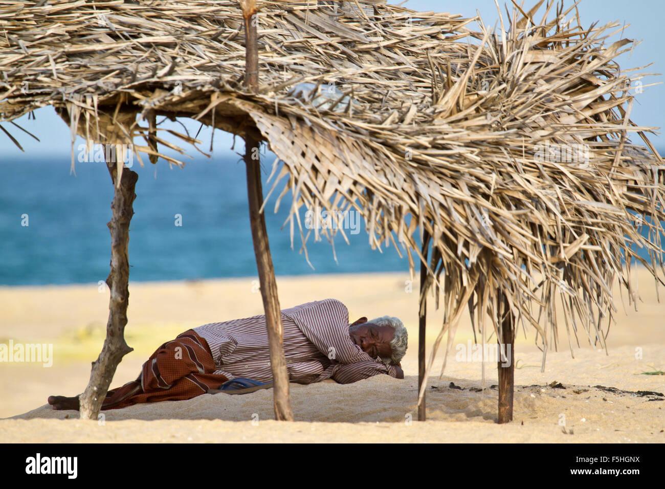 Uomo Tamul rendendo pan nel distretto di Batticaloa beach, Sri Lanka Immagini Stock