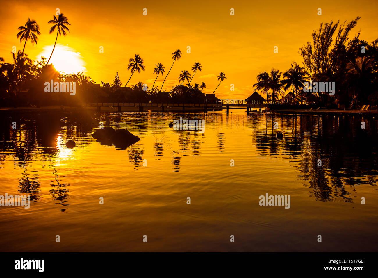 Tramonto in un paradiso tropicale con palme e oceano Immagini Stock