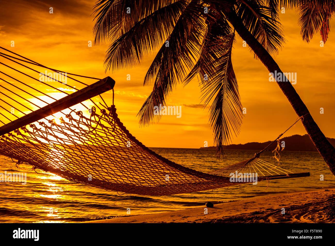 Silhouette di amaca e palme su una spiaggia tropicale al tramonto Immagini Stock
