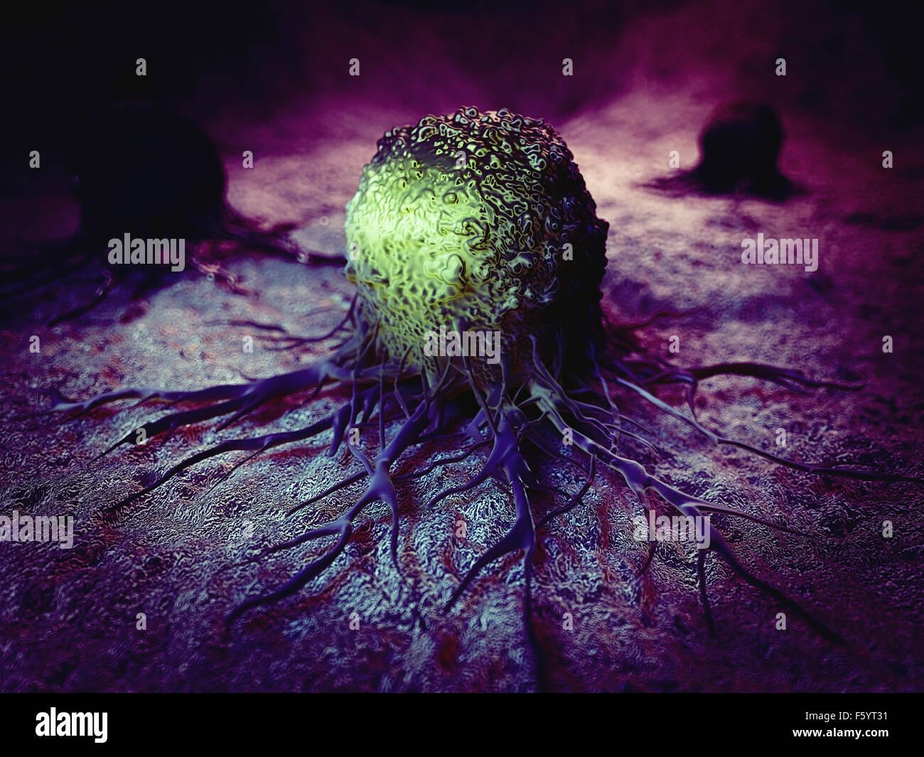 Dal punto di vista medico illustrazione accurata della cellula di cancro Immagini Stock