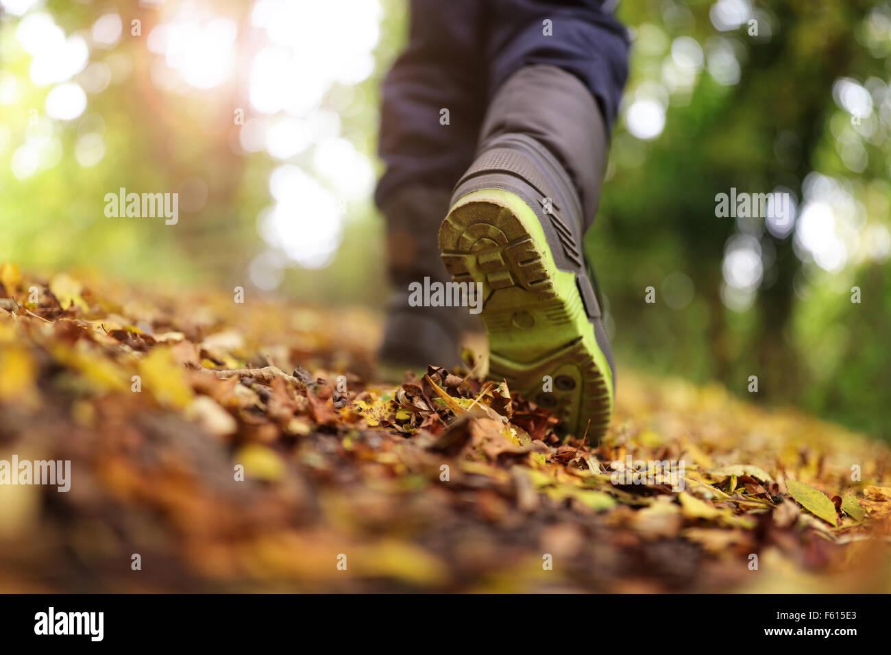 Camminare in autunno e inverno Immagini Stock