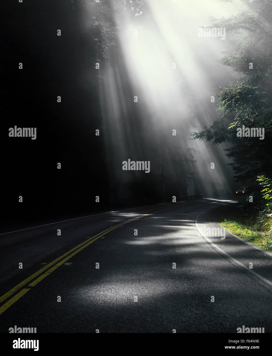 Stati Uniti d'America, in California, del Norte County, Highway 1 con raggi di luce Immagini Stock