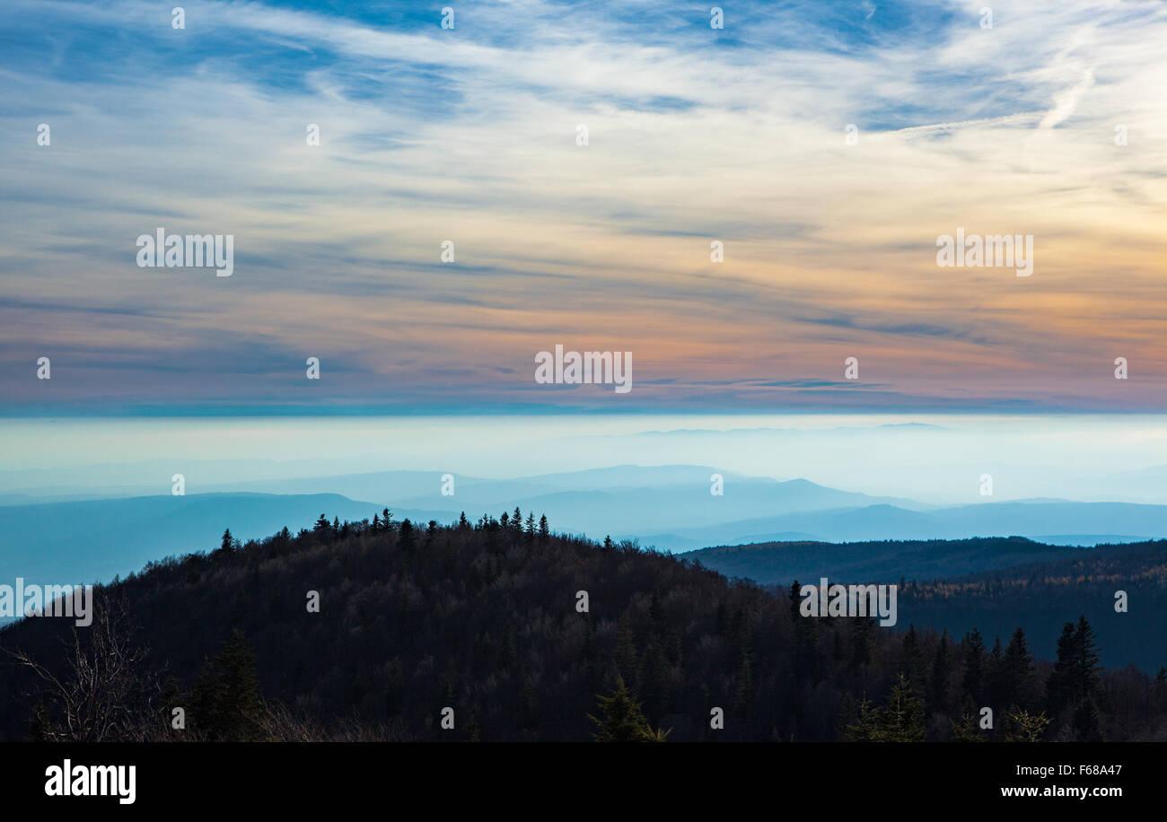 La Montagne de Lure (Alpes de Haute-Provence,Provence, Francia) Immagini Stock