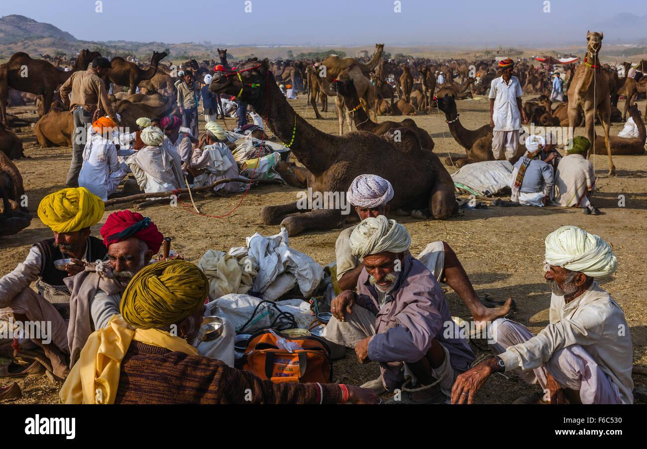 Il cammello tradizionali commercianti negoziare l'acquisto e la vendita di cammelli nel cuore del deserto del Immagini Stock