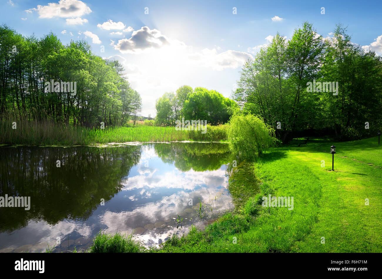 Parco verde vicino al fiume calmo sotto la luce del sole Immagini Stock