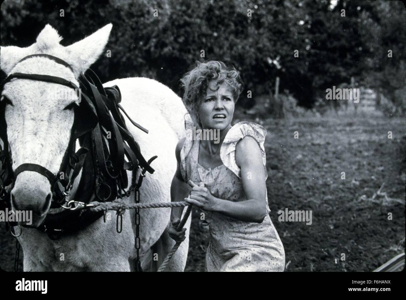 Data di rilascio: Settembre 21, 1984 il titolo del filmato: pone nel cuore Regista: robert Benton STUDIO: TriStar Immagini Stock