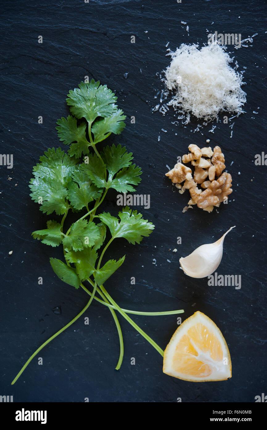 Cilantro/noce di coriandolo Pesto ingredienti Immagini Stock