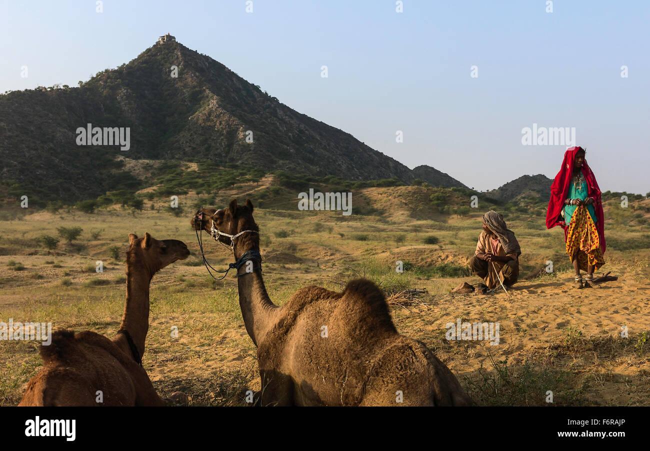 Un cammello commerciante e sua moglie si prendono una pausa nel cuore del deserto del Thar vicino a Pushkar, Rajasthan, Immagini Stock