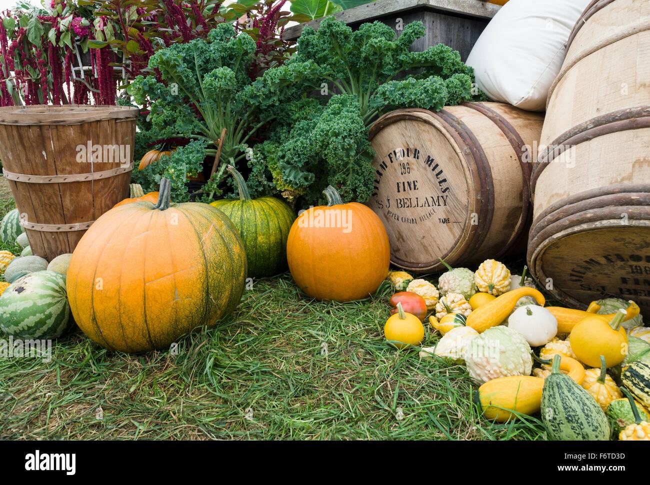 Un display di prodotti agricoli ad un vecchio tempo equo. Zucche, squash e meloni dominano un display della bontà Immagini Stock