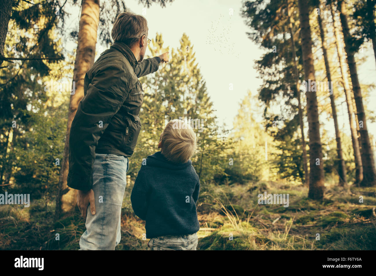 Uomo che mostra il bambino uno stormo di gru lasciando per l'inverno Immagini Stock