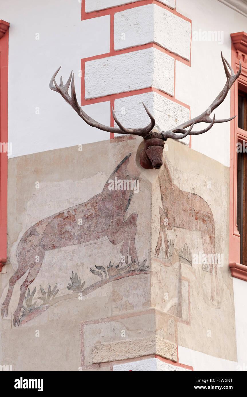 Segno della guest house e ristorante Casa cu Cerb nel centro storico, Sighisoara, Transilvania, Romania Immagini Stock