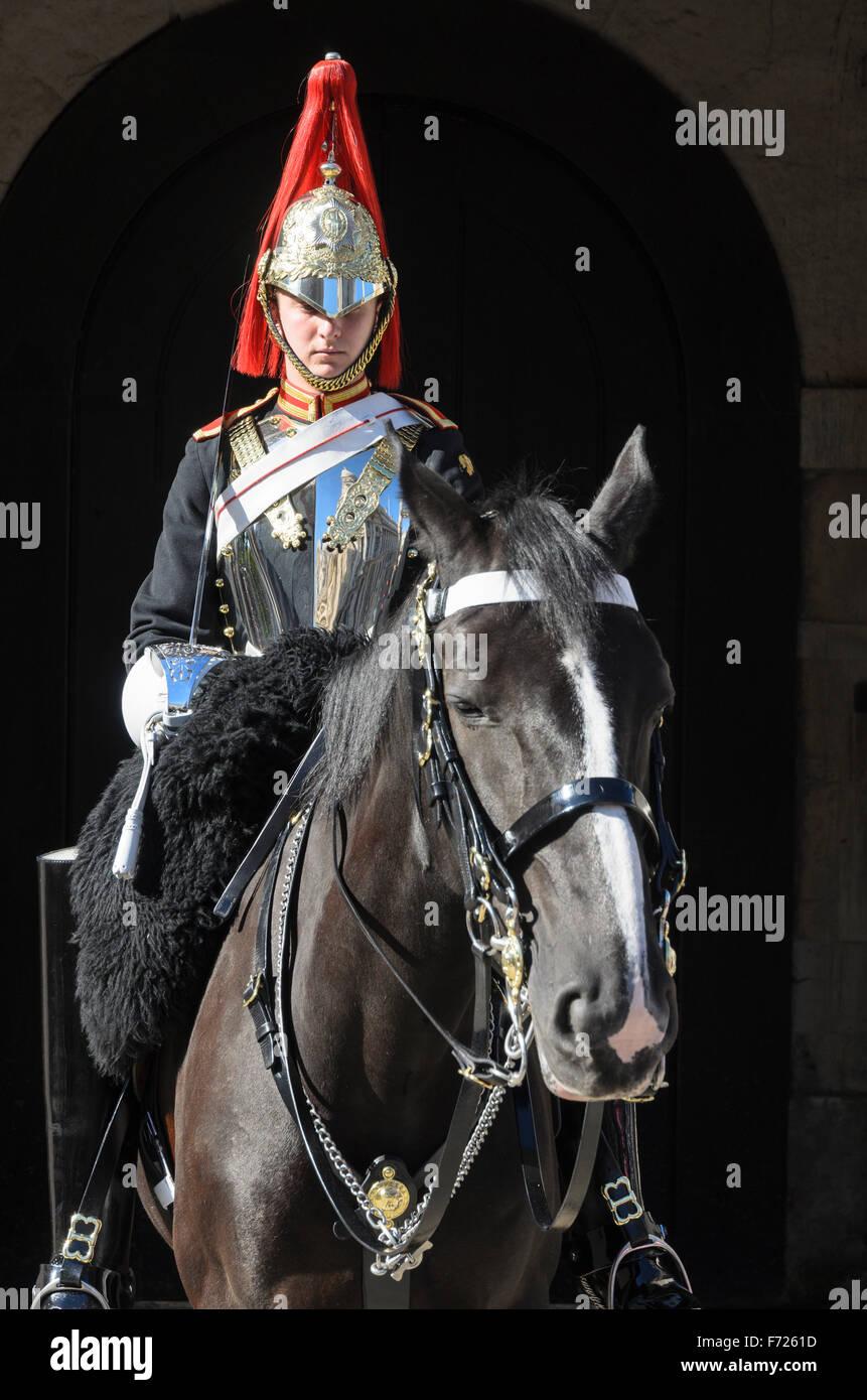 Un soldato montato dal Blues e Royals reggimento dell'Esercito britannico sta di guardia sulla sfilata delle Guardie a Cavallo, Whitehall, Londra. Foto Stock