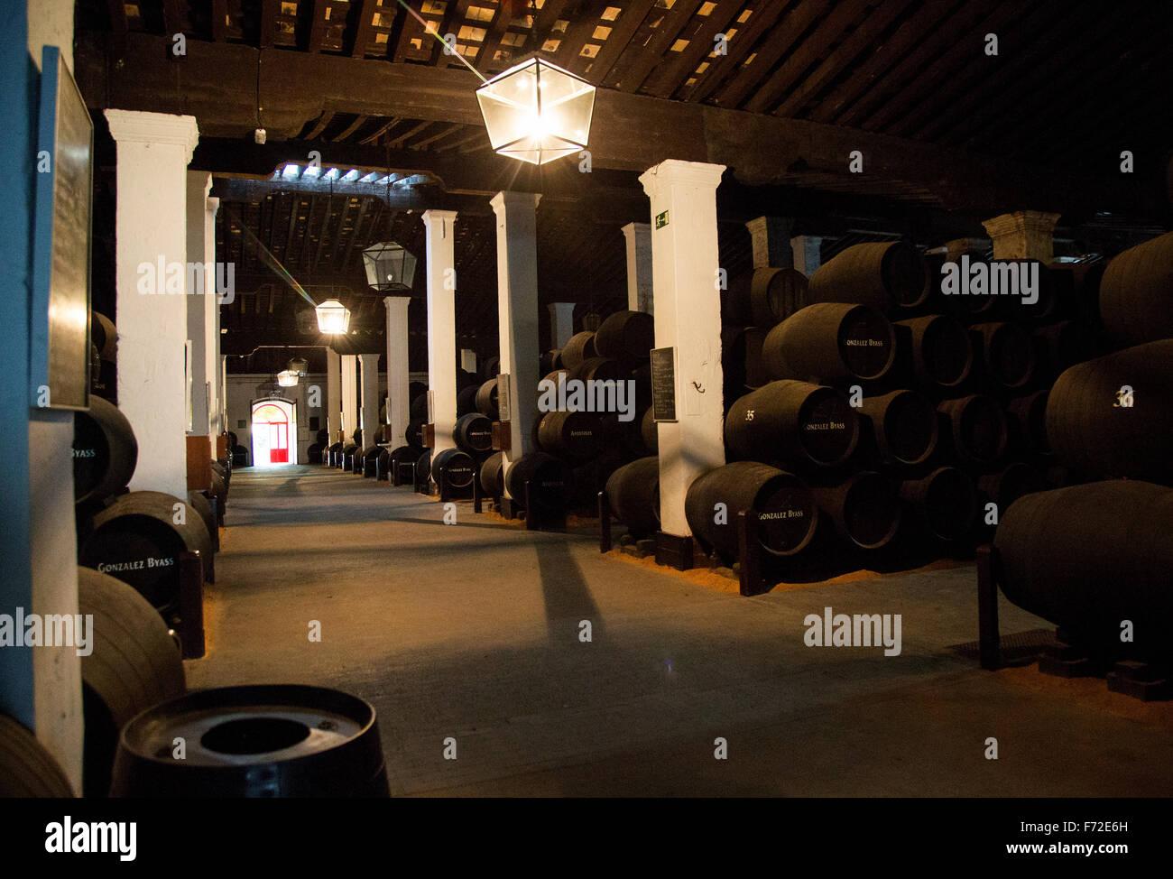 In botti di rovere di sherry di maturazione del vino in cantina, Gonzalez Byass bodega, Jerez de la Frontera, la Foto Stock