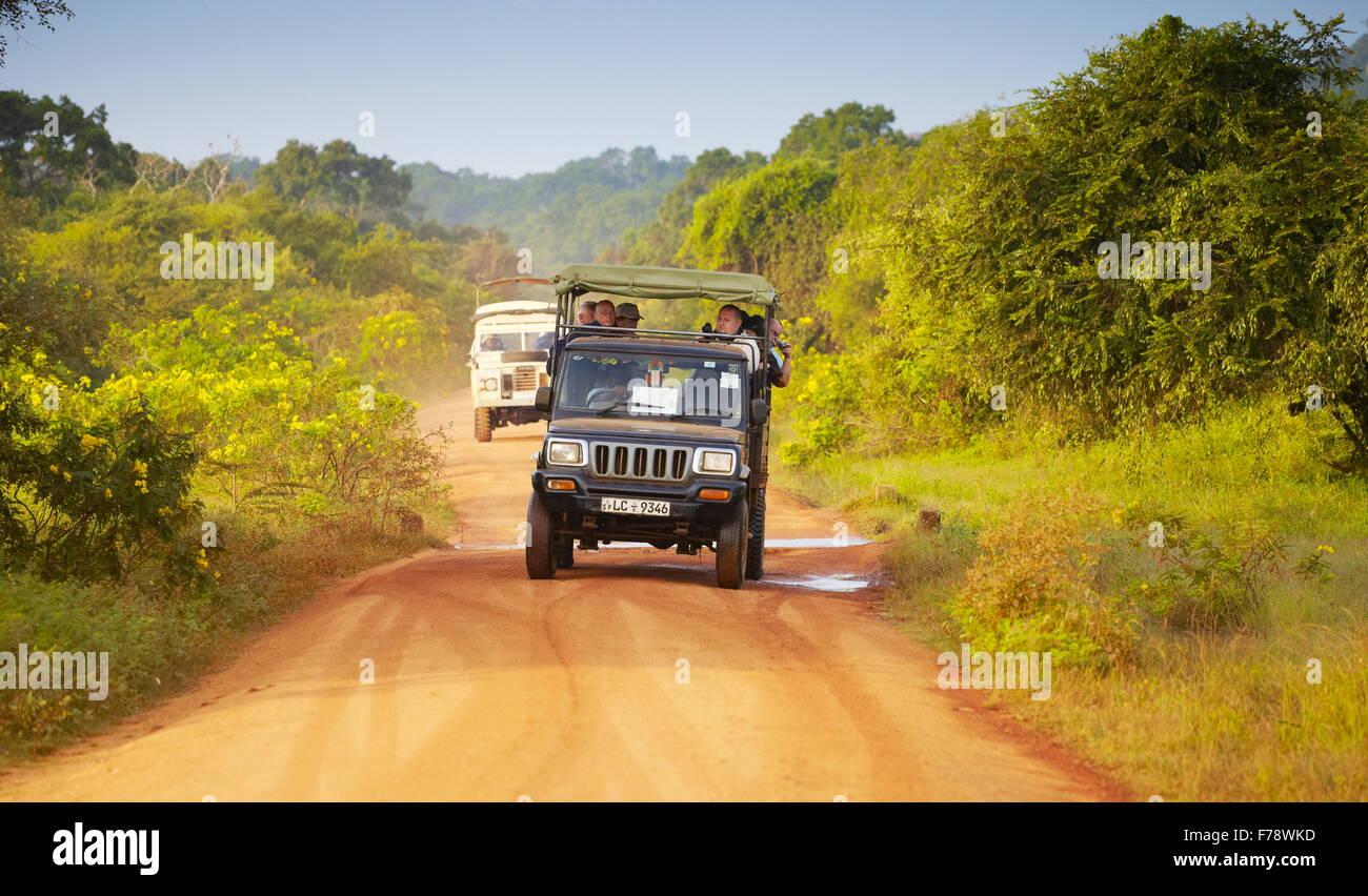 Jeep fuoristrada safari nel parco nazionale Yala, Sri Lanka Immagini Stock