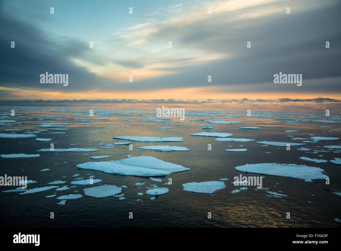 Nel ghiaccio Immagini Stock