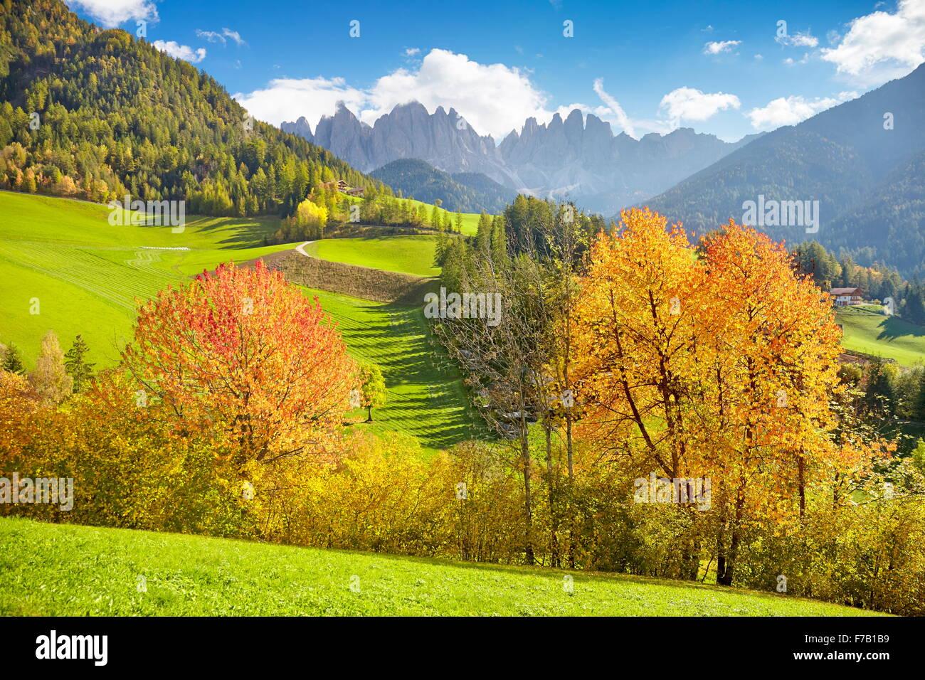Val di Funes in autunno a colori, Dolomiti, Alto Adige, Alpi, Italia Immagini Stock