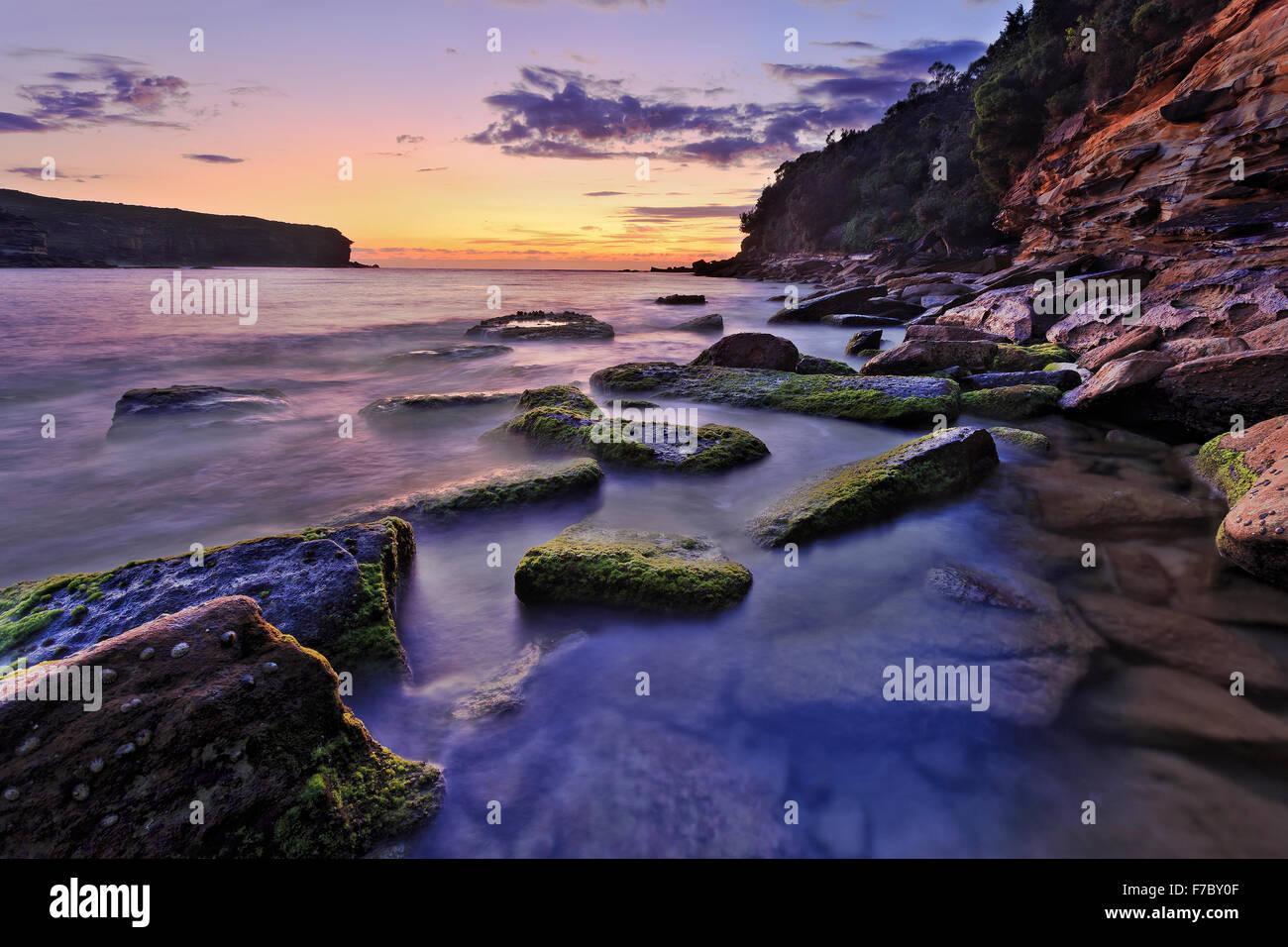 Trasparente mare chiaro piano presso il Royal National Park Wattamola spiaggia rocciosa in Australia all'alba con acqua sfocata intorno al green Foto Stock