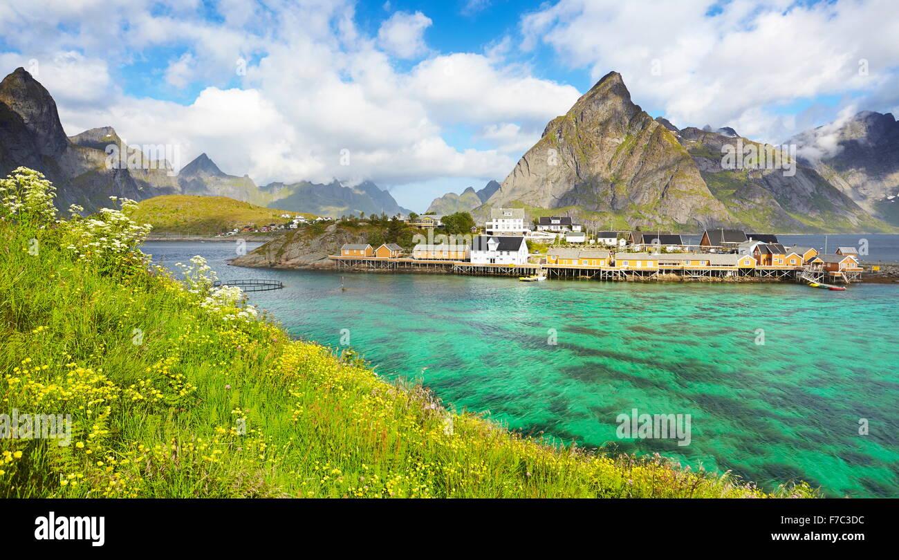 Isole Lofoten, molla paesaggio, Moskenes, Norvegia Immagini Stock