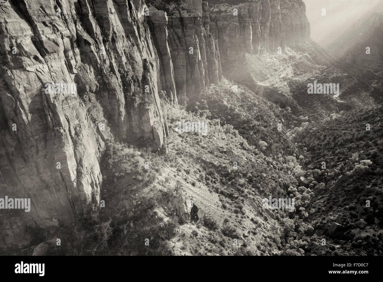 Visualizzare di nuovo la crescita di alberi e la strada al tramonto dal Canyon Overlook. Parco Nazionale di Zion, Immagini Stock