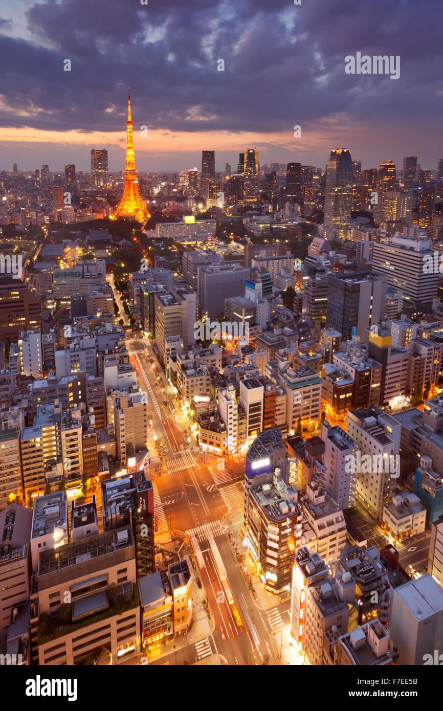Lo skyline di Tokyo in Giappone con la Tokyo Tower fotografata al crepuscolo. Immagini Stock