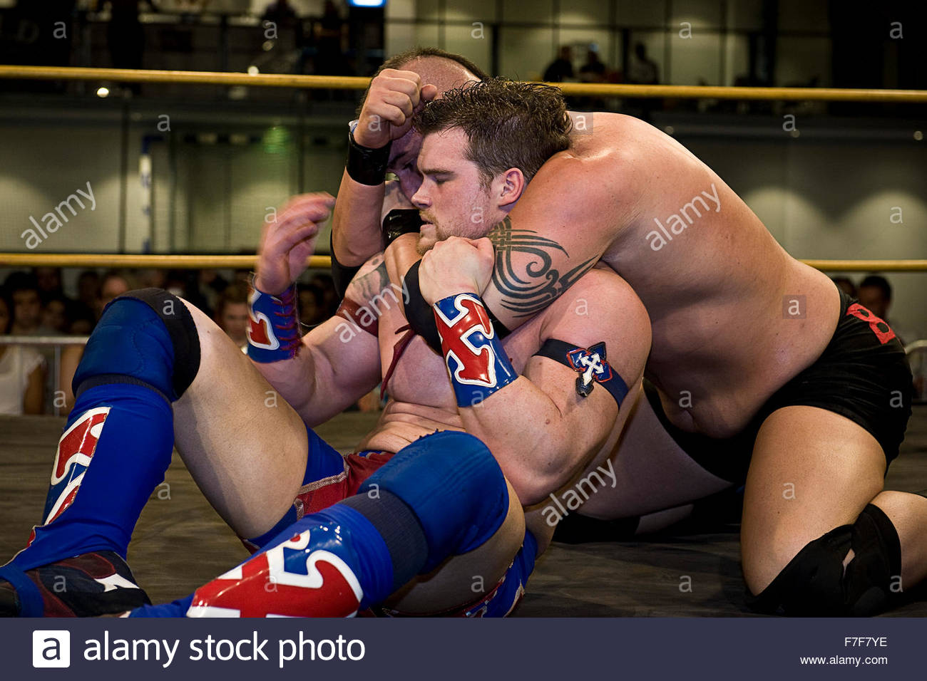 Wrestling Immagini Stock