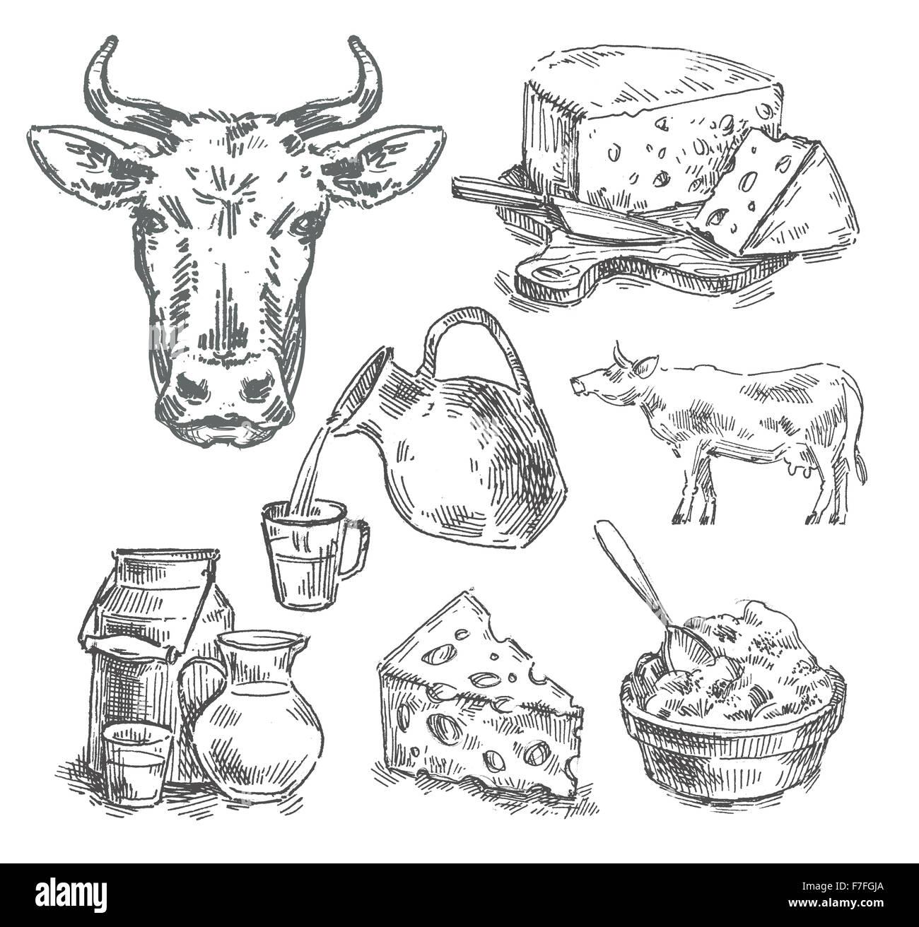 Disegnata a mano di vacca, latte, formaggio. schizzo Immagini Stock