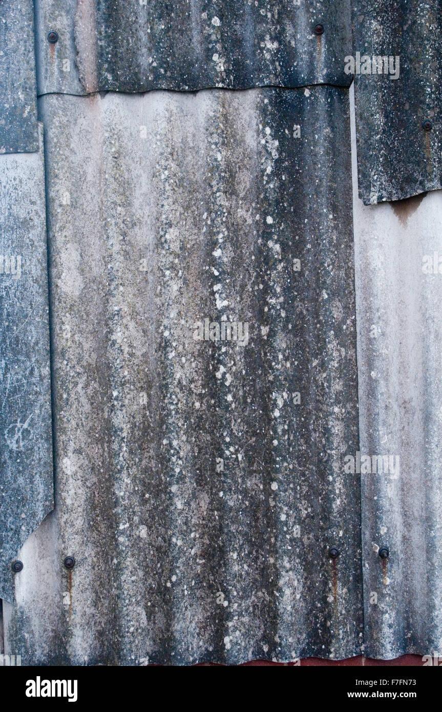 Rimozione amianto rimozioni foglio ondulato in fogli di materiale da costruzione Materiali specialista di specialisti Immagini Stock