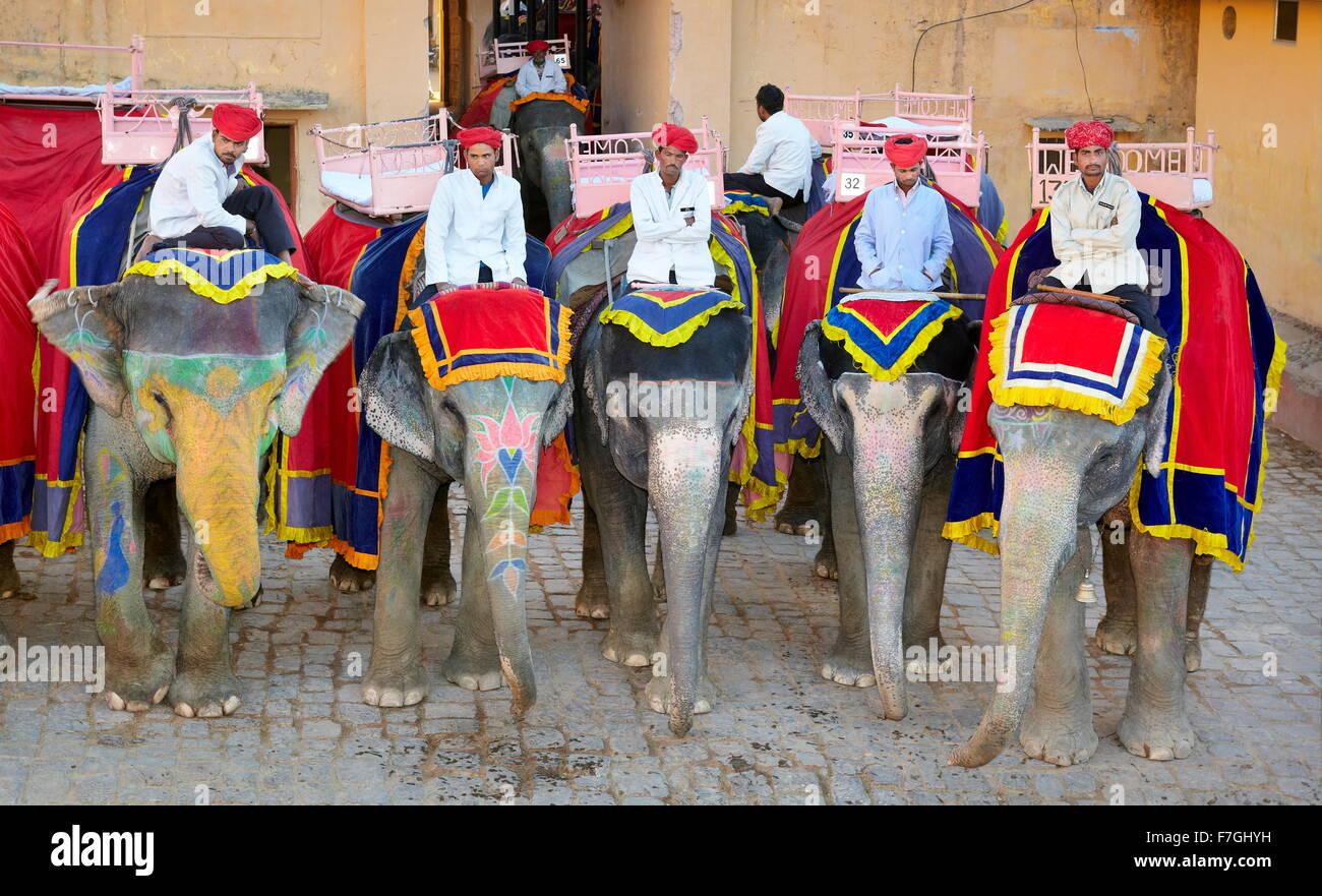 Gli elefanti in attesa per i turisti, Forte Amber Ambra Palace Jaipur, Rajasthan, India Immagini Stock